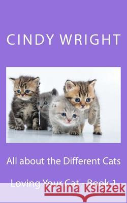 All about the Different Cats Cindy Wright 9781484819821 Createspace Independent Publishing Platform - książka