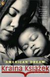 American Dream: Three Women, Ten Kids, and a Nations Drive to End Welfare