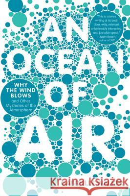 An Ocean of Air: Why the Wind Blows and Other Mysteries of the Atmosphere Gabrielle Walker 9780156034142 Harvest Books - książka