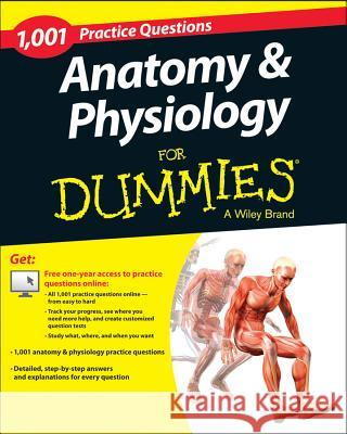Anatomy practice test questions