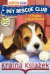 ASPCA Kids: Pet Rescue Club #5: A Puppy Called Disaster Rose Hapkins 9780794440060 Sfi Readerlink Dist