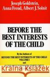 Before the Best Interests of the Child Joseph Goldstein Anna Freud Albert J. Solnit 9780029123904 Free Press