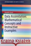 Data Assimilation: Mathematical Concepts and Instructive Examples Rodolfo Guzzi 9783319224091 Springer