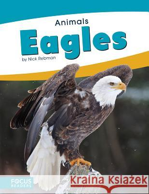Eagles Nick Rebman 9781635178494 Focus Readers - książka