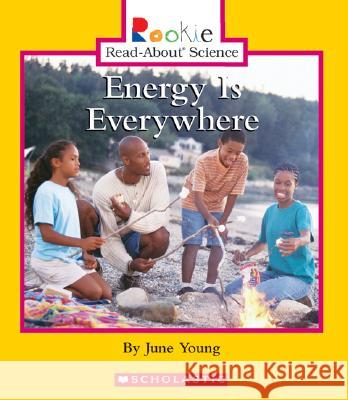 Energy Is Everywhere June Young Andrew Fraknoi Cecilia Minden-Cupp 9780516280035 Children's Press (CT) - książka