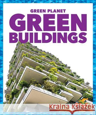Green Buildings Rebecca Pettiford 9781620314012 Pogo Books - książka