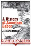 History of American Labor Joseph G. Rayback Joseph G. Rayback 9780029258507 Free Press