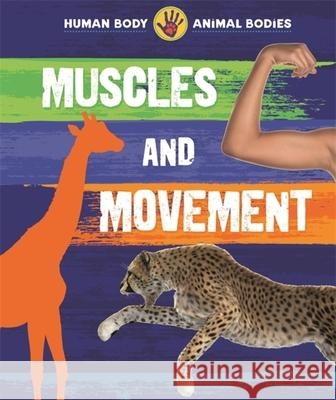 Human Body, Animal Bodies: Muscles and Movement Izzi Howell 9781526306814 Hachette Children's Group - książka