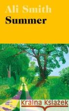 Summer Ali Smith 9780241207062 Penguin Books Ltd
