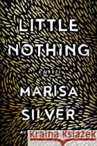 Little Nothing Marisa Silver 9780399167928 Blue Rider Press