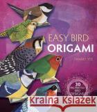 Easy Bird Origami: 30 Pre-Printed Bird Models Tammy Yee 9780486812724 Dover Publications