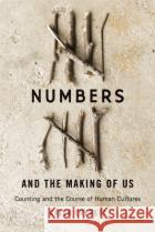 Numbers and the Making of Us – Counting and the Course of Human Cultures Everett, Caleb 9780674504431 John Wiley & Sons