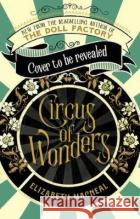 Circus of Wonders Elizabeth Macneal 9781529002539 Pan Macmillan