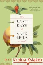 The Last Days of Cafe Leila Donia Bijan 9781616205850 Algonquin Books