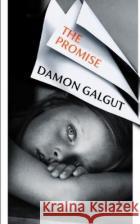 The Promise Damon Galgut 9781784744069 Vintage Publishing