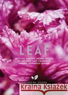 Leaf: Lettuce, Greens, Herbs, Weeds - 120 Recipes That Celebrate Varied, Versatile Leaves Phipps, Catherine 9781787132405