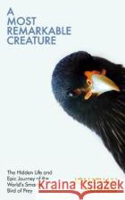 A Most Remarkable Creature Jonathan Meiburg 9781847923561 Vintage Publishing
