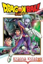 Dragon Ball Super, Vol. 10  9781974715268