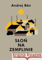 Słoń na Zemplinie. Opowieści ze Słowacji Ban Andrej 9788365595249 Książkowe Klimaty
