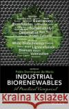 Industrial Biorenewables: A Practical Viewpoint Domínguez de María, Pablo 9781118843727 John Wiley & Sons