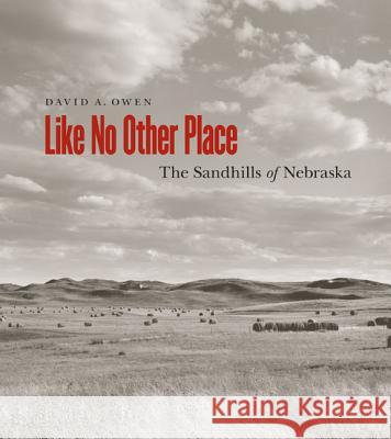 Like No Other Place: The Sandhills of Nebraska David Owen 9780803240537 Bison Books - książka