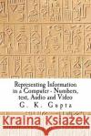 Representing Information in a Computer: Numbers, Text, Audio and Video Dr G. K. Gupta 9781466495555 Createspace