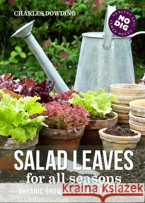 Salad Leaves for All Seasons: Organic Growing from Pot to Plot Charles Dowding 9780857844668 Uit Cambridge Ltd. - książka