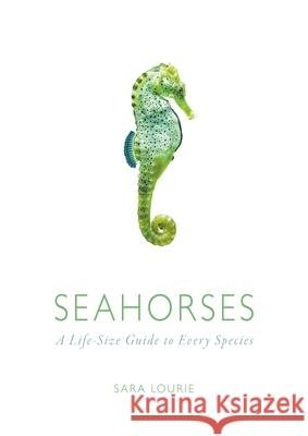 Seahorses: A Life-Size Guide to Every Species Sara Lourie 9780226338415 University of Chicago Press - książka