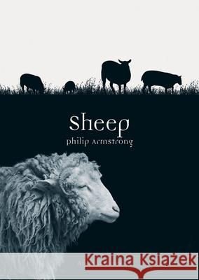 Sheep Philip Armstrong 9781780235936 Reaktion Books - książka