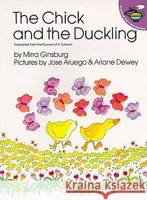 The Chick and the Duckling Mirra Ginsburg V. Suteev Ariane Dewey 9780689712265 Aladdin Paperbacks - książka