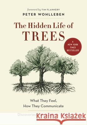 The Hidden Life of Trees: What They Feel, How They Communicate--Discoveries from a Secret World Peter Wohlleben 9781771642484 Greystone Books - książka