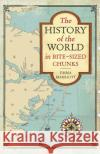 The History of the World in Bite-Sized Chunks Marriott, Emma 9781782437079