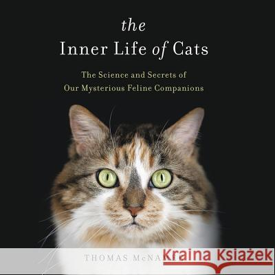 The Inner Life of Cats - audiobook Thomas McNamee 9781478972648 Hachette Book Group - książka