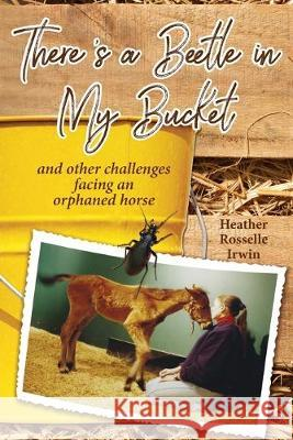 There's a Beetle in My Bucket: and other challenges facing an orphaned horse Heather Rosselle Irwin   9781946198174 PC Junior - książka