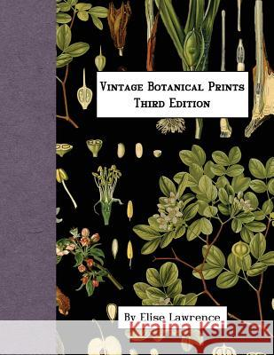 Vintage Botanical Prints: Third Edition Elise Lawrence 9781542989367 Createspace Independent Publishing Platform - książka